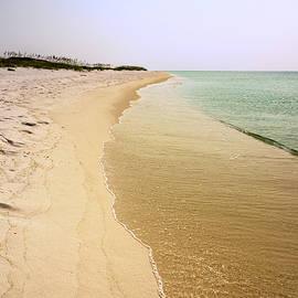 Pensacola Beach 4 - Pensacola Florida by Brian Harig