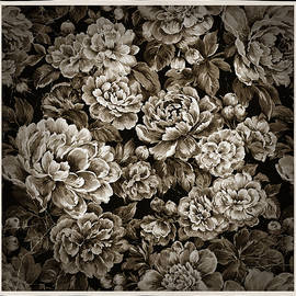 PEONIES -vintage series  by Grace Iradian