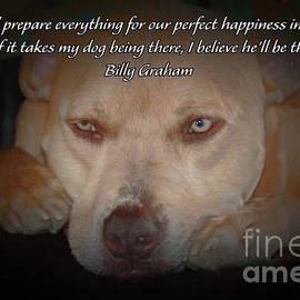 Janice Rae Pariza - Perfect Happiness