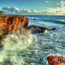 Reid Callaway - Perpetual Waves 2 Oahu Sunset Hawaii Collection Art