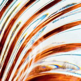 Wendy Wilton - Petals Of Glass