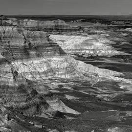 Joseph Smith - Petrified Forest Mesa