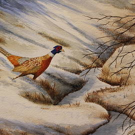Pheasant Crossing by Denise Harty