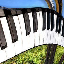 Paul Wear - Piano Land