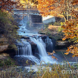 Pickwick Mill Waterfall Framed With Leaves by Kari Yearous