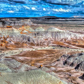 Picturesque Blue Mesa by Don Mercer
