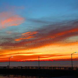 Michael Rucker - Pier Sunrise