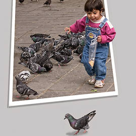 Pigeon Control Problem - Child Feeding Pigeons by Mitch Spence