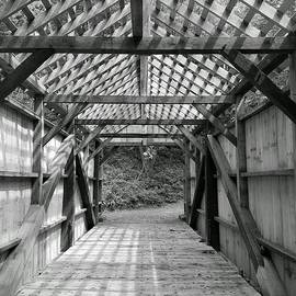Michael Hills - Pine Bridge Black and White