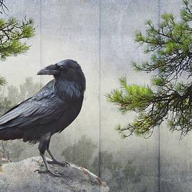 R christopher Vest - Pine Rock Raven