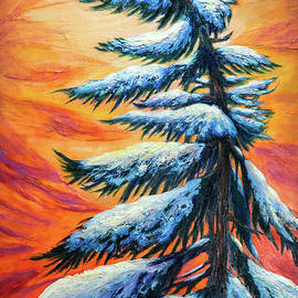Pine tree Winter portrait by Lilia D