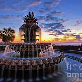 Sam Antonio Photography - The Pineapple Fountain at Sunrise in Charleston, South Carolina, USA