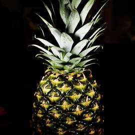 pineapple in shine - Hyuntae Kim