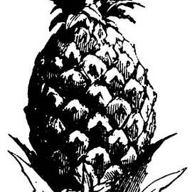 Pineapple Print - English School