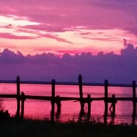 Melinda NesSmith-Picard - Pink and Purple Sunset