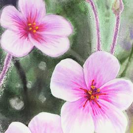 Pink And Purple Watercolor Flowers - Irina Sztukowski