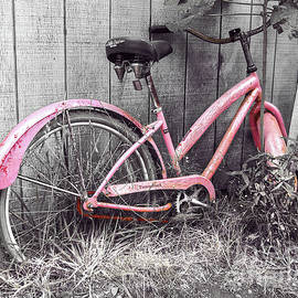 Jerry Cowart - Pink Bicycle