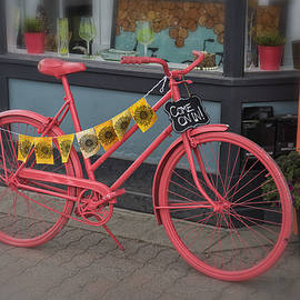Pink Bicycle Leadville Colorado DSC06600 by Greg Kluempers