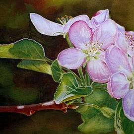 Pink Blossoms by Greg and Linda Halom