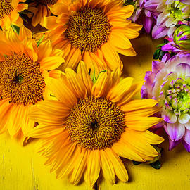 Garry Gay - Pink Dahlias And Sunflowers