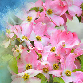 Pink Dogwood Delight by Regina Geoghan