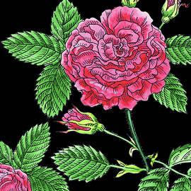 Pink French Rose Watercolour  - Irina Sztukowski