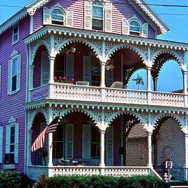 Ira Shander - Pink House