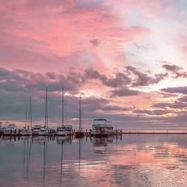 Leticia Latocki - Pink Morning