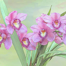 Pink Orchid Photo Sketch by Patti Deters