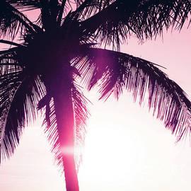 Sharon Mau - Pink Palm Tree Silhouettes Kihei Tropical Nights