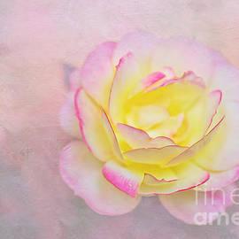 Pink Passion Pastel by Kaye Menner by Kaye Menner