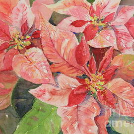 Pink Poinsettias by Marsha Reeves