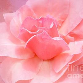 Regina Geoghan - Pink Rose Romance