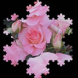 Nancy Pauling - Pink Rosebud