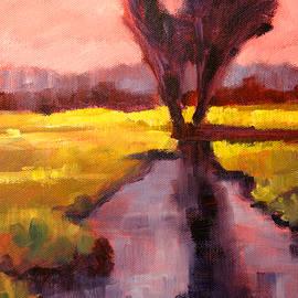 Pink Sky Sunset by Nancy Merkle