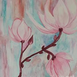 Pink Tulip Magnolias by Maria Urso