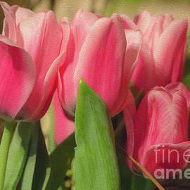 Elizabeth Dow - Pink Tulips