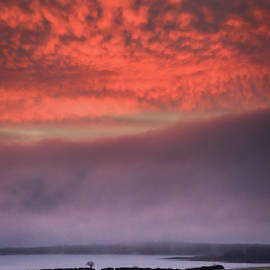 Pink Winter Sunrise by James Truett