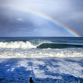Pipe Rainbow Palms by Sean Davey