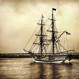 David Millenheft - Pirates Life