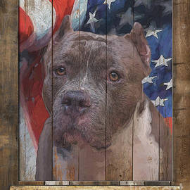 Pit Bull Flag Poster by Tim Wemple