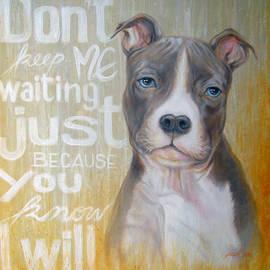 Pit Bull by Jack No War
