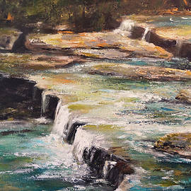 Alan Lakin - Pixley Falls Park NY