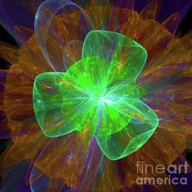 Plasma Life - Raphael Terra