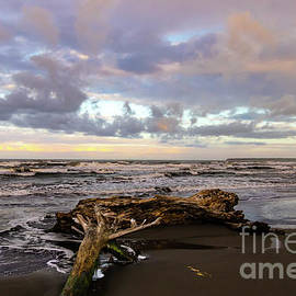 Playa Negra Beach Storm Clouds by Norma Brandsberg