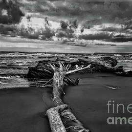 Playa Negra Storms by Norma Brandsberg
