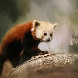 The Panda Red by Kim Hojnacki