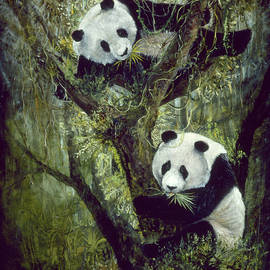 Playful Panda's by Jeanie Southworth