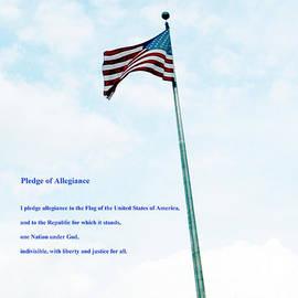Pledge Of Allegiance by Gerlinde Keating - Galleria GK Keating Associates Inc