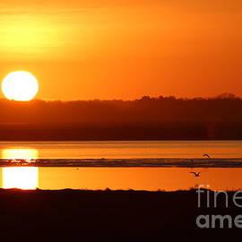 Plum Island Sunset by Maili Page